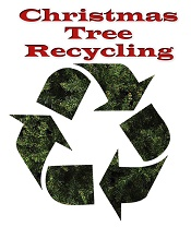 How to Recycle or Dispose of Christmas Trees